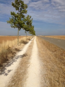 This is the path today, looks a lot like yesterday.