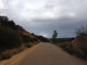 We did see a rainbow,