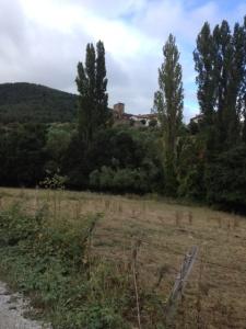 More scenery